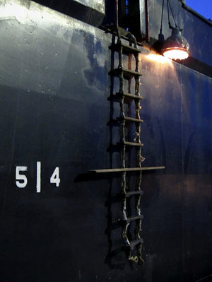 110112pladder