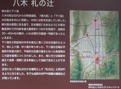 100101yagi_tsuji