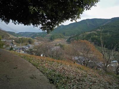 100101yokiura02