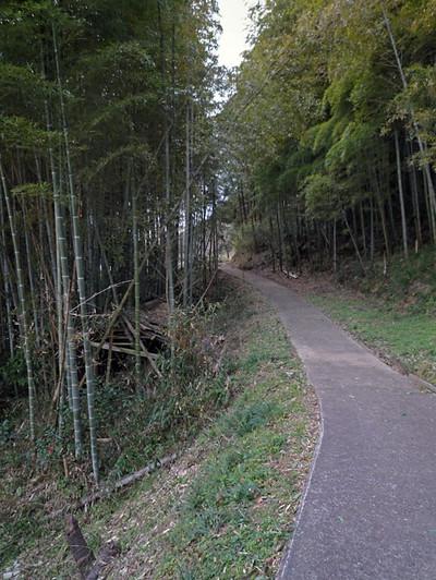 100101yokiura05