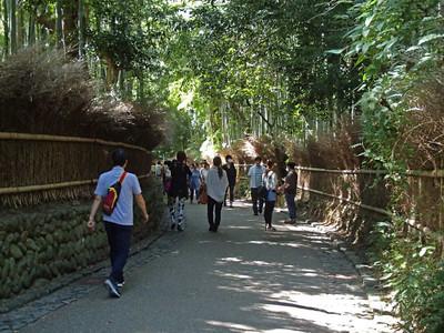07_arashiyama